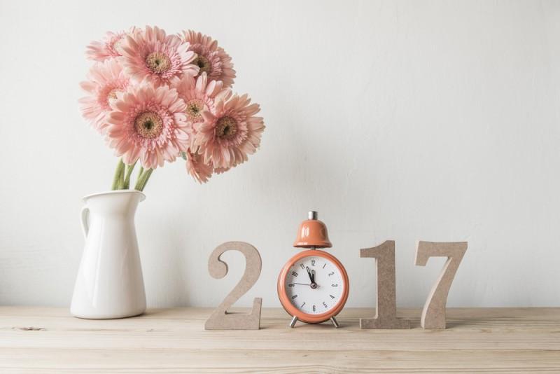 organizar a casa para 2017